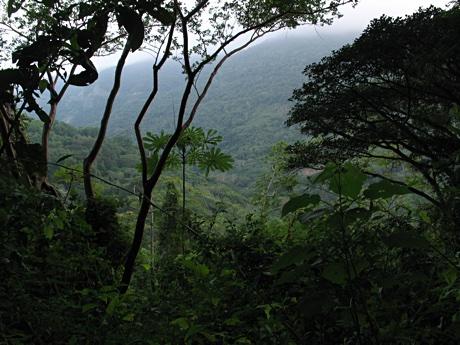 Canyon near Palmarejo, Veracruz