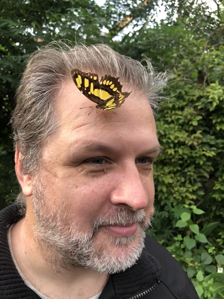 Author with a butterfly on his head; Siproeta stelenes? Photo by Esme